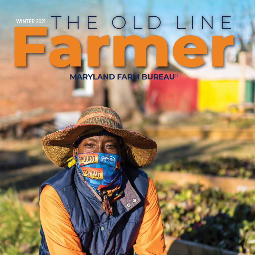 Old_Line_Farmer